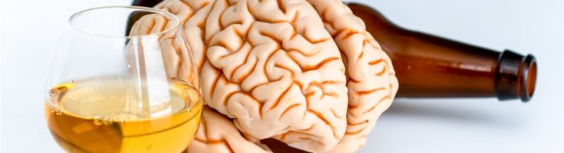 what part of the brain is affected by alcohol